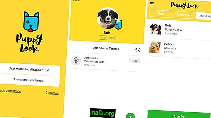 10 φοβερότερες εφαρμογές για ιδιοκτήτες σκύλων